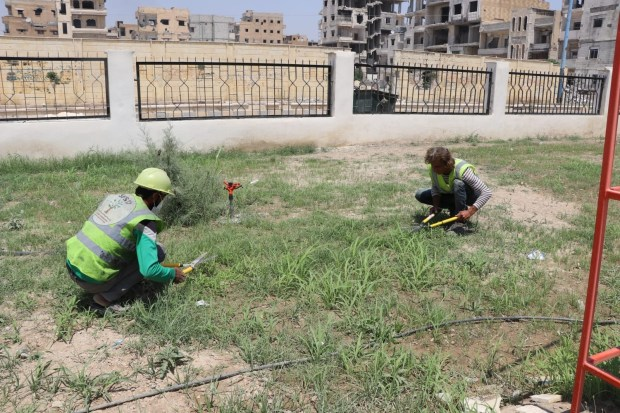 Workers are seen cutting grass and weeds at a park in Raqqa, Syria, June 13, 2019. (Courtesy photo)