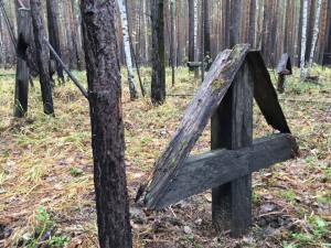 Cruce Siberia Basarabia Necunoscuta
