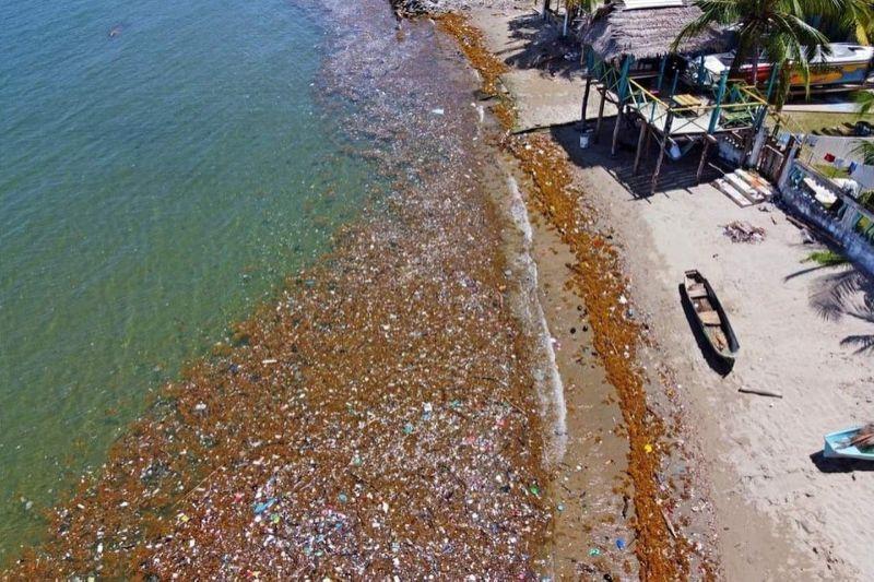 Toneladas de basura invaden las playas de Honduras