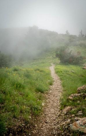 Trail to Florida Saddle - Mt. Wrightston, Arizona