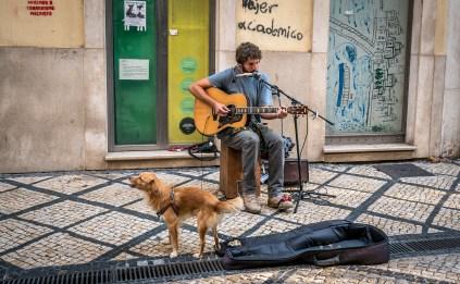 Street Musician in Coimbra