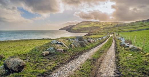 Torr Head Farm Road