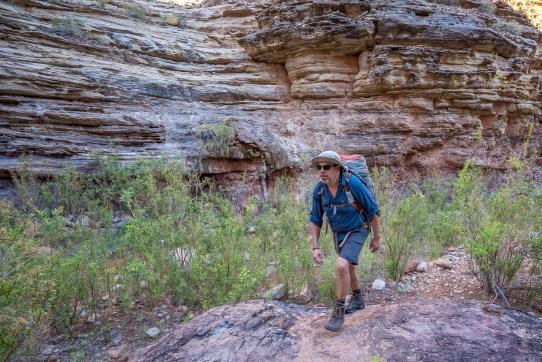 Todd Hiking