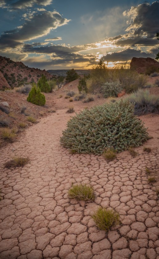 Capitol Reef - Dry Sunset