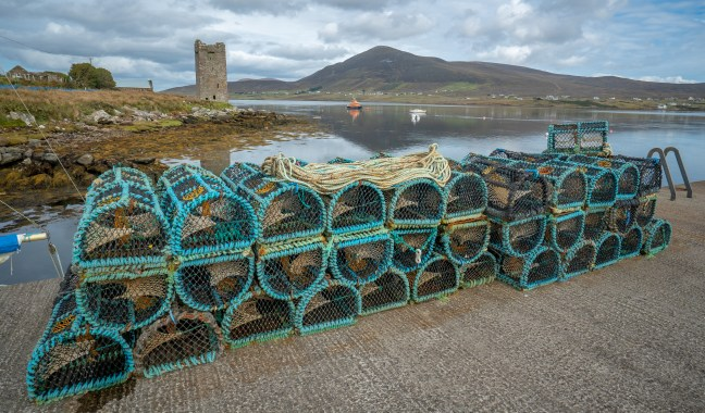 OMalley Towerhouse - Lobster Traps