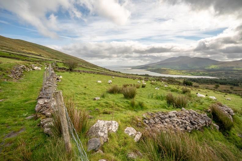 Rural Landscape Dingle Peninsula