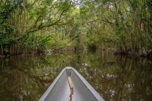 Canoeing Through the Lagoon