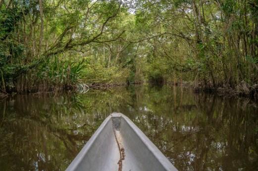 Canoeing Through the Lagoon