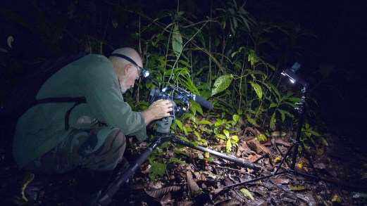 Carl Shooting at Night