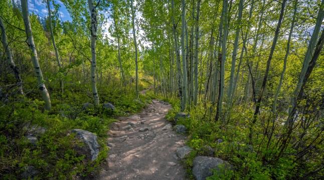 Taggert Lake Trail