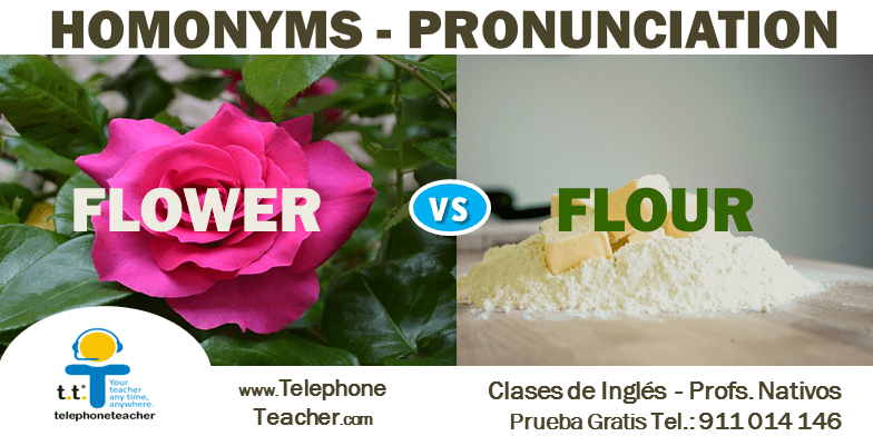 Flower Vs Flour