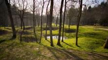 Verdun: Holes made by shelling