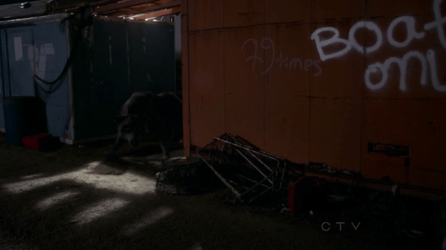 """a dumpster that reads: """"79 times boats only"""""""