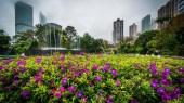 Les jardins suspendus de Hong Kong
