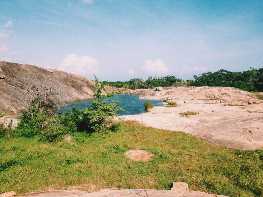 Yala National Park's Beauty in Sri Lanka Travel