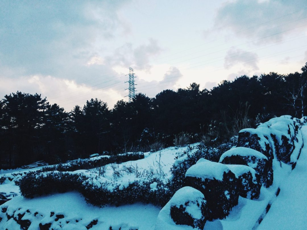 Jeju Snowed Over