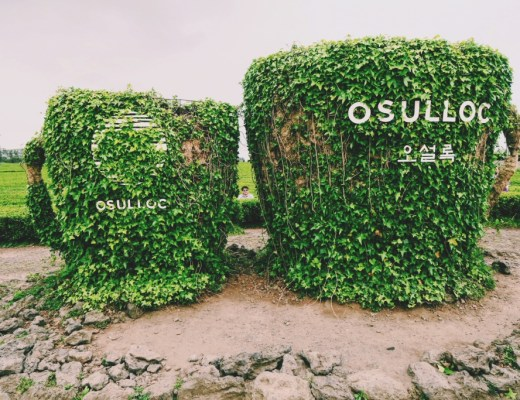 O'Sulloc Tea Mug Sign on Jeju Island