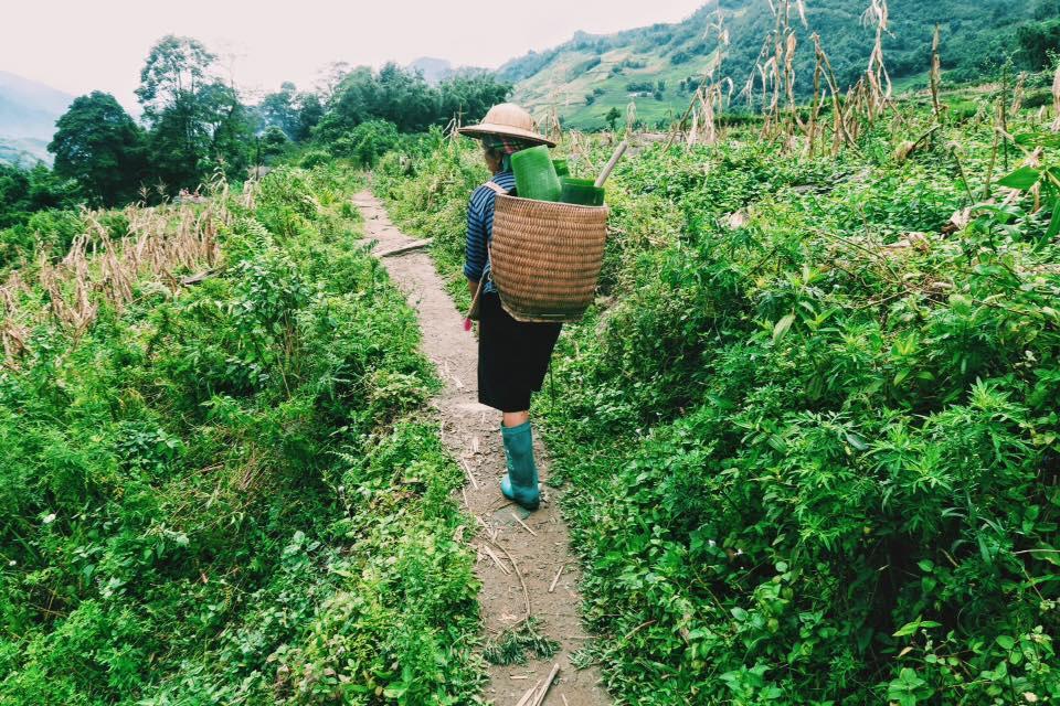 Sapa Vietnam Trekking