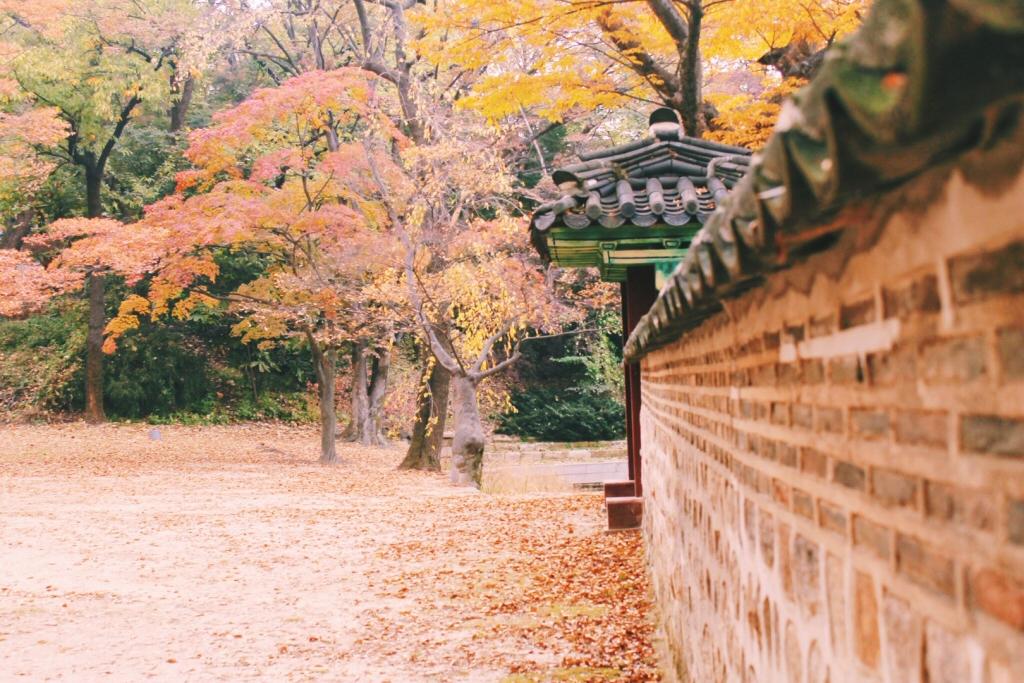 Changdeokgung Palace - Secret Garden, Autumn in Korea