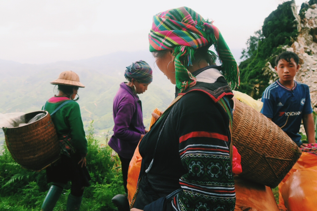 Corn, Hmong hill-tribes on Sapa trek in Vietnam