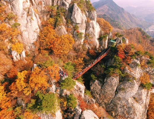 Daedunsan Cloud Bridge, Autumn in Korea