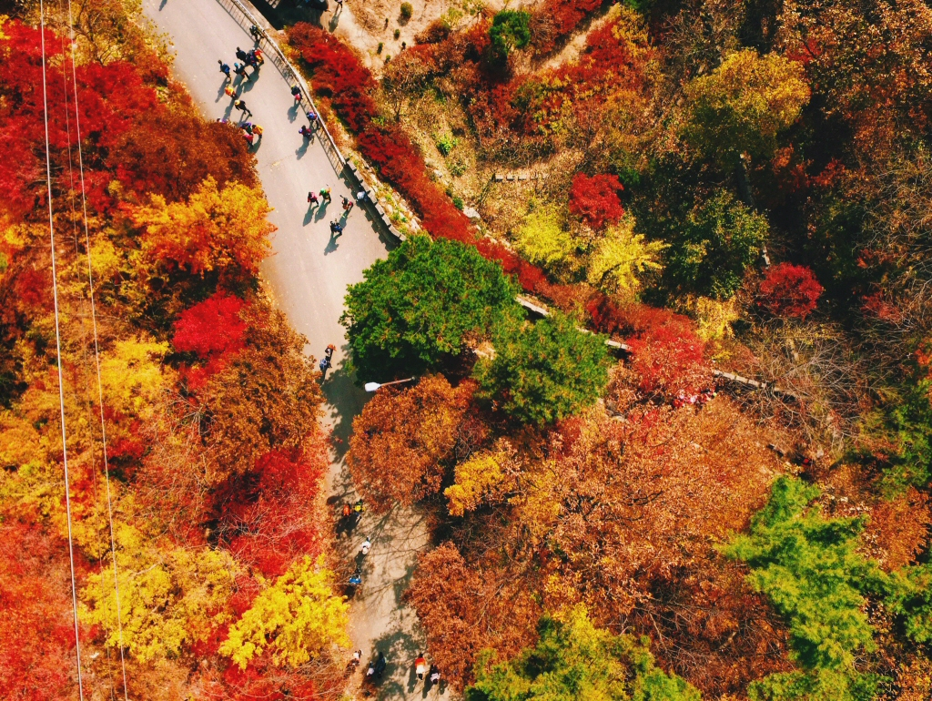 Daedunsan Park, Couples Travel for Autumn in Korea