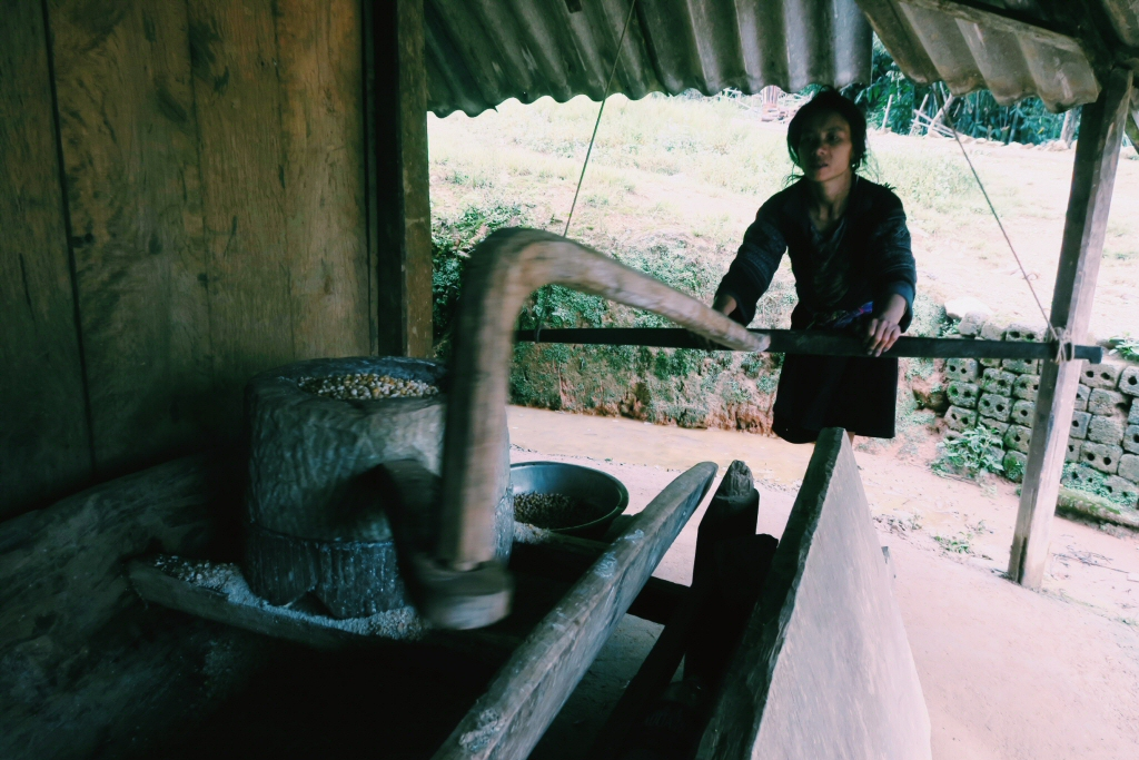 Hmong Hill-tribes grinding corn in Sapa, Vietnam