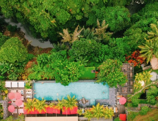 Jungle Fish Bali, Jungle Infinity Pool in Ubud, Indonesia