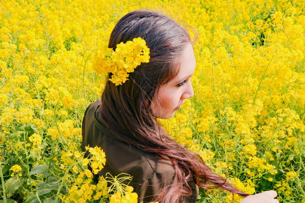 Canola flower fields on Jeju Island, South Korea for spring are amazing