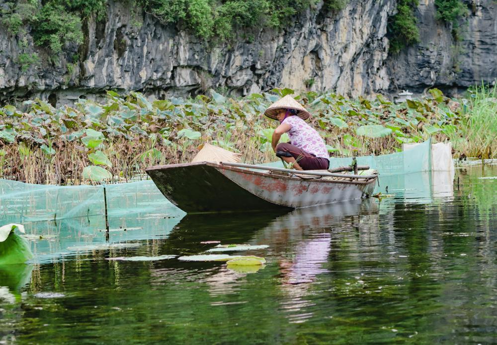 Tam Coc Boat Tour Vietnam, Ninh Binh