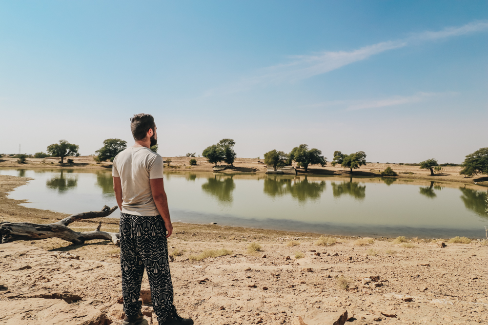 Oasis in Jaisalmer India