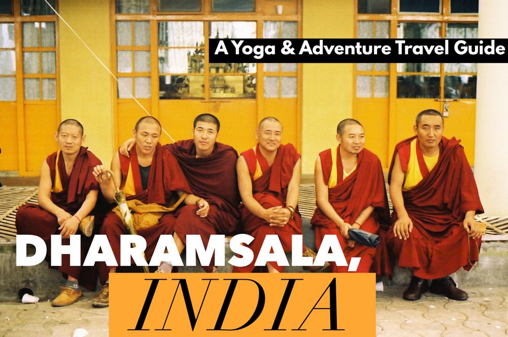 Head to the yoga training India destination of Dharmsala and find exquisite natural landscapes and spiritual settings, perfect for a Dharmsala yoga retreat or an adventure trip!