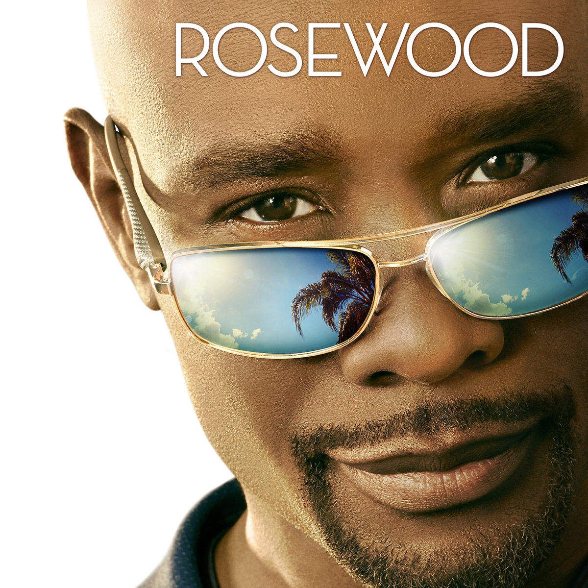 https://i0.wp.com/televisionpromos.com/wp-content/uploads/2015/05/Rosewood-FOX-Artwork-key-art-Morris-Chestnut.jpg