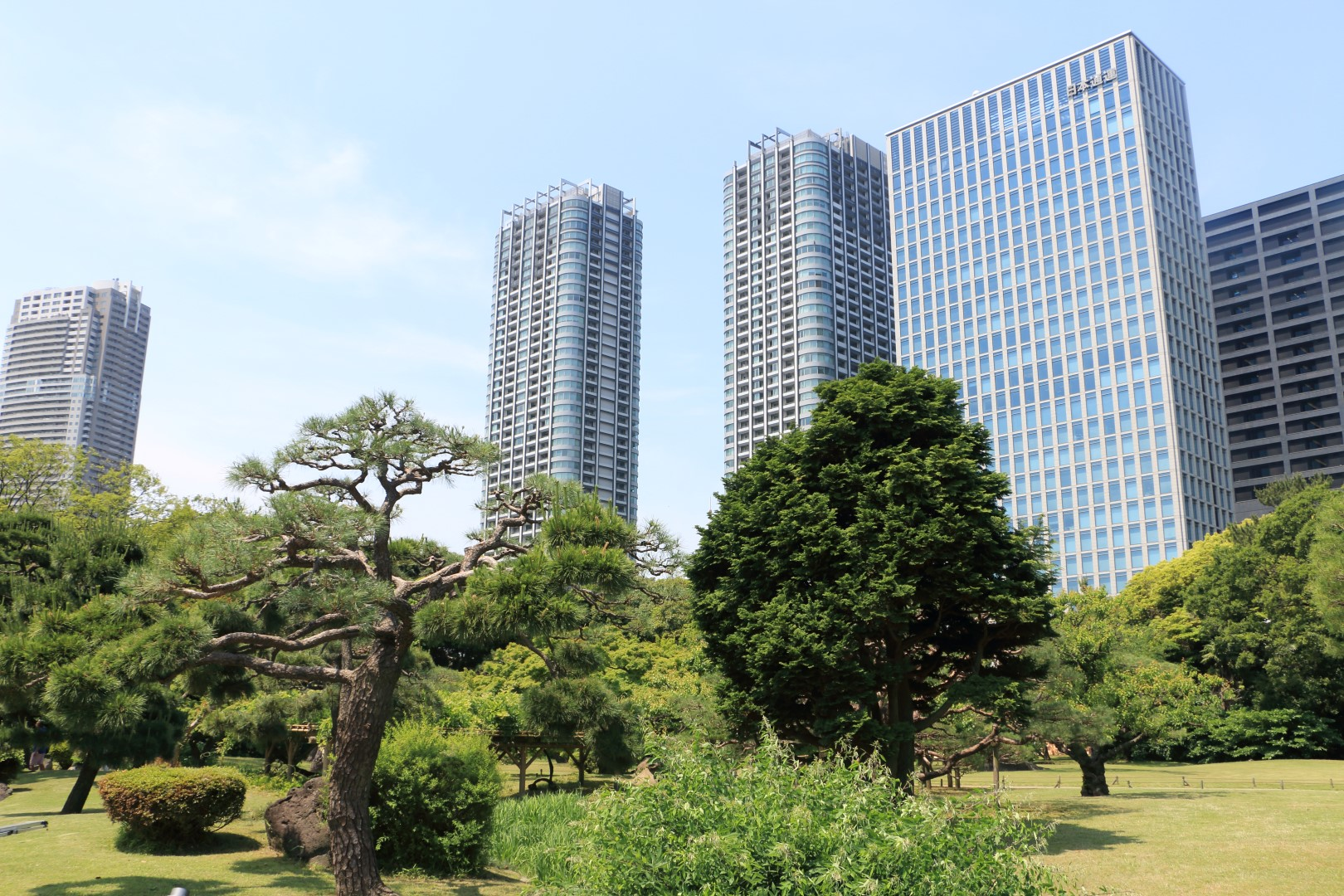 Japan Day 4 Hamarikyu Gardens And Kappabashi Dori Tell A Travel Tale