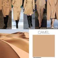Camel, culotter och röda läppar