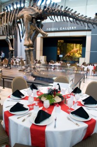 Plan Your Event  Tellus Science Museum in Cartersville GA
