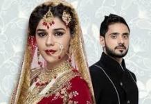 Zara's Nikah update Wednesday 24 February 2021 On Zee world