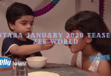 Antara January 2020 Teasers Zee World