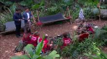 im a celebrity results november 4 group
