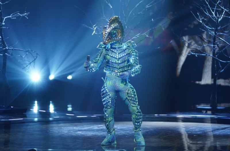 Chameleon performs.