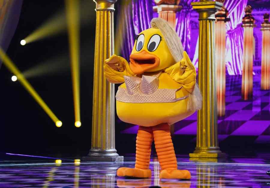 Duck performs
