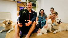 ben fogle itv keep dog happy