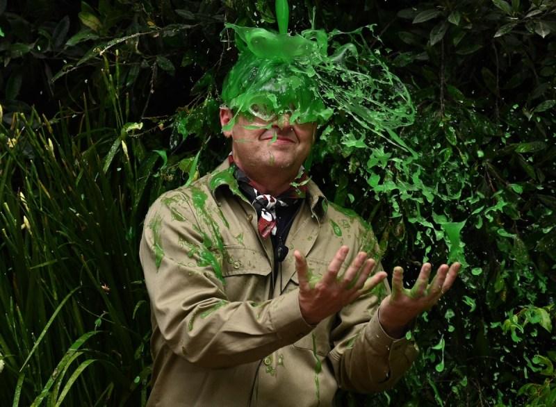 I'm A Celebrity… A Jungle Story on ITV