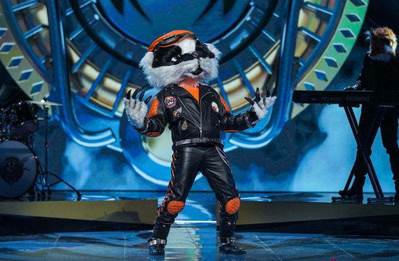 Badger. Picture: ©Bandicoot TV