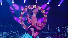 Flamingo. Picture: ITV/©Bandicoot TV