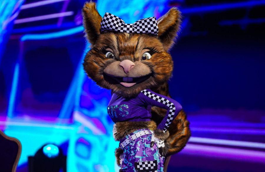 Squirrel. Picture: ITV/©Bandicoot TV