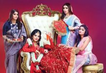 Zee5 Guddan Manmohini Quick Snips Insights and more