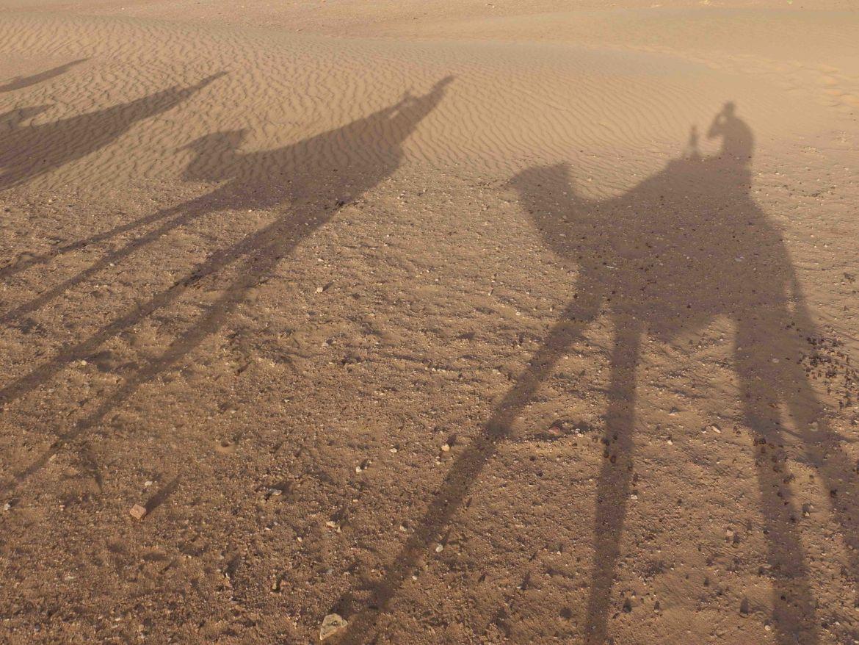 Excursión al desierto de Zagora, Marruecos