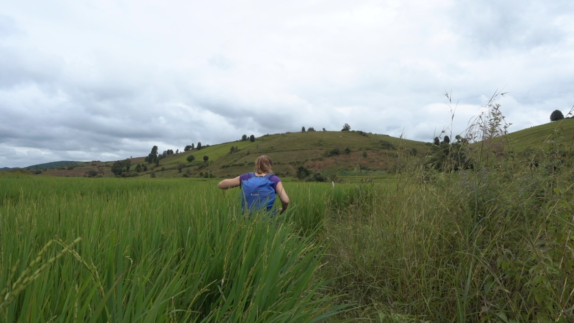 Trekking de Kalaw al Lago Inle