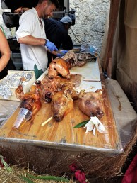 Festival Medieval de Provins (45)